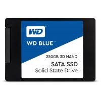 WESTERN DIGITAL Ssd Int 250Gb