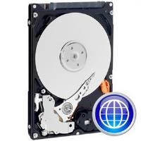 WESTERN DIGITAL Wd 320Gb